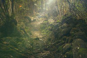 path, winding, rocky